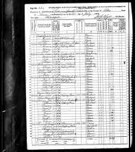 1870 US Census Pike Co., Pennsylvania