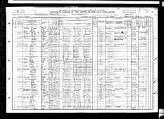 1910 US census Fitzgerald, Ben  Hill County, Georgia