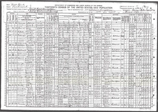 1910 US Census Castleton, Richmond Co. New York