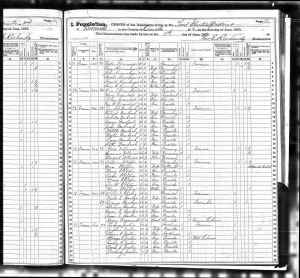 1875 New York State Census