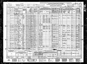 1940 US Census  Waldo, Russell county, Kansas