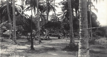 Native Village \New Guinea Jan. 1945