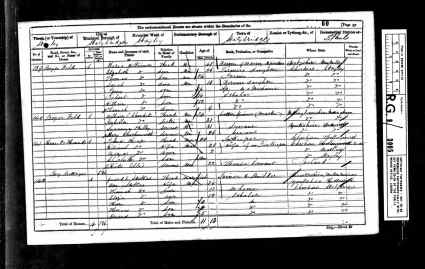 1861 UK Census Staley, Ceshire, England