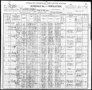 1900 US Census  Manhattan Borough New York, New York