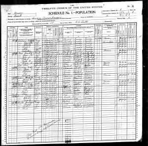 1900 United States Federal Census-12