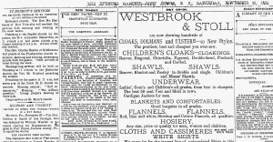 The Evening Gazette Port Jarvis, New York 20 November, 1880