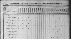 1790 US Census Charleston, Cheshire, New Hampshire