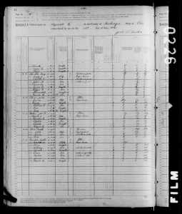1880 US Census Hopewell Muskingum Ohio