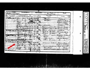 1851 UK Census Ashton under Lyne Lancashire